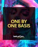 Lash Art Pro - 1 daagse BASIS cursus voor de one by one techniek
